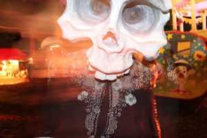 Colleen Burke presents 'The Skulls'
