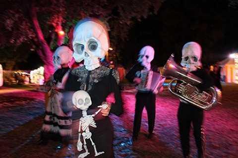 Colleen Burke presents The Skulls