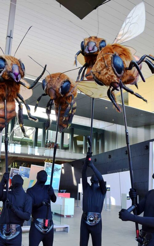 Giant Bugs